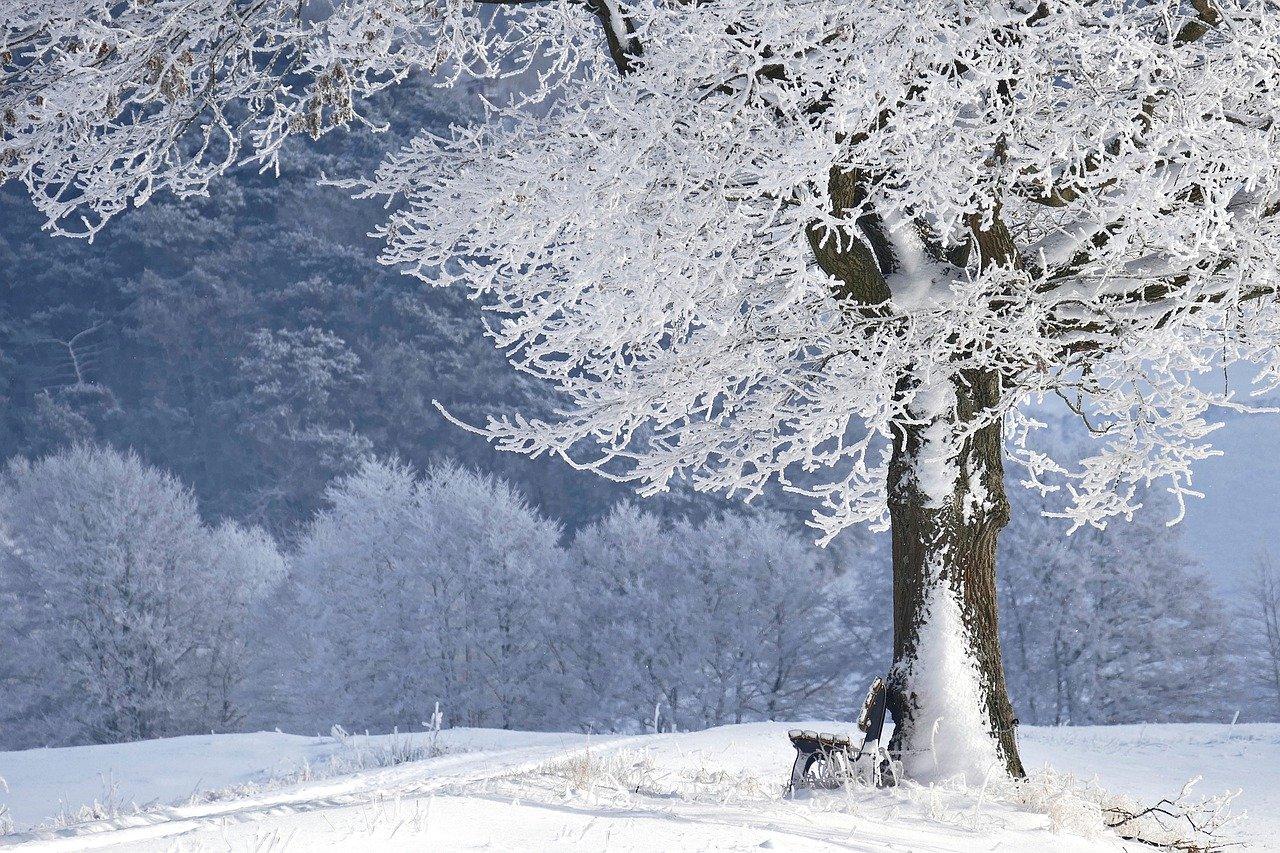 Der Winter naht…